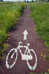 Segregated cycle facilities Pista ciclabile Radverkehrsanlage