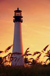 Cape Florida Lighthouse - 65918769