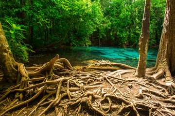 Emerald pool is unseen place in Thailand