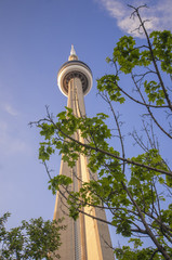 CN Tower and maple leafs