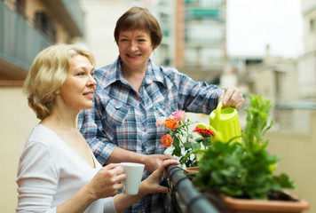 Two women drink tea on balcony