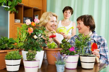 women  and girl near  many flowerpots