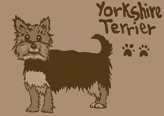 Yorkshire Terrier vintage