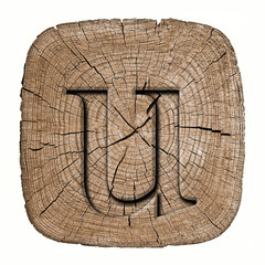 Wooden alphabet block, letter u