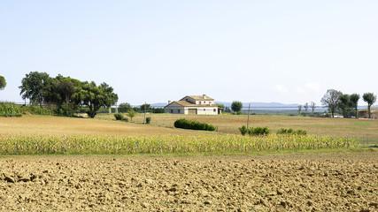 Tierras de siembra con casa rural