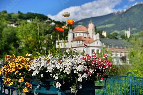 Leinwanddruck Bild Blumenschmuck in Meran | Südtirol