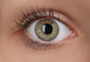 Beautiful eye, closeup