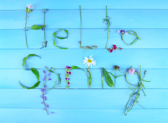 Inscription hello spring from leaves and flowers