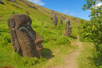 Moai Statues on Easter Island - Rapa Nui, Chile