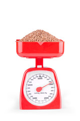 Buckwheat on the scales