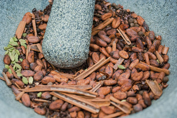 Cocoa beans, cinnamon and cardamom in mortar