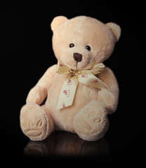 teddy bear toy on the black background