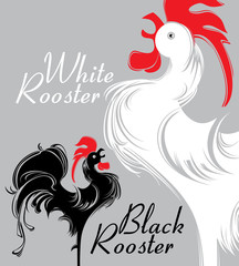 White Rooster. Black Rooster.