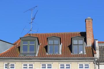 Vintage roof