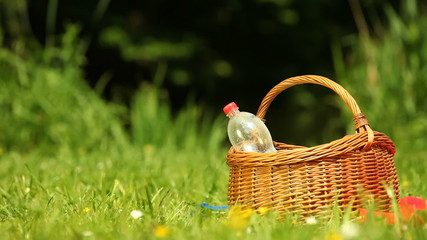 Picnic. Bottle of water in the basket on the meadow.