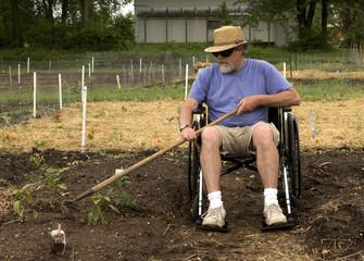 wheelchair gardening