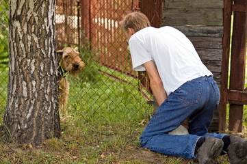 Conversation with a dog through the fence