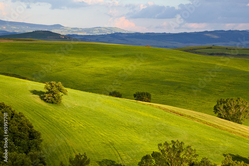 Countryside, San Quirico d`Orcia , Tuscany, Italy - 65957701