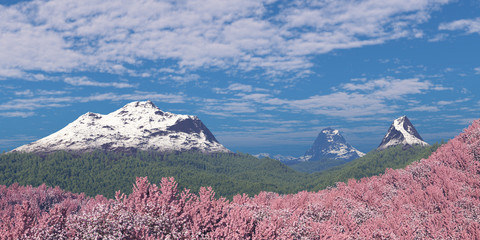 Cherry blossoms on a background of mountains.