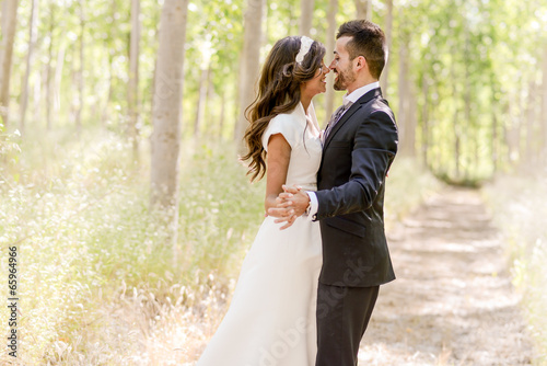 Just married couple in poplar background - 65964966