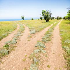 Fork roads