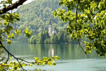 View of Lake Bled with island in Slovenia in spring