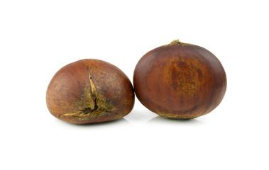 Chinese chestnut on white background