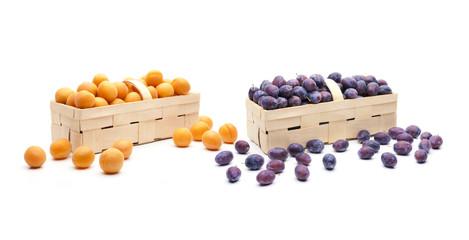 Aprikosen und Zwetschgen