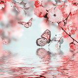 Pink flower of an Oriental cherry in and butterfly - 65971189