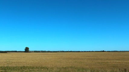 Agricultural stubble field after harvest