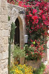Idylle in der Altstadt von Rhodos