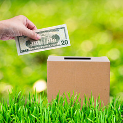 Human hand putting money in brown donate box with green grass an