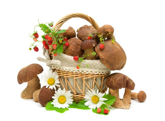 mushrooms, strawberries and chamomile flowers on white backgroun