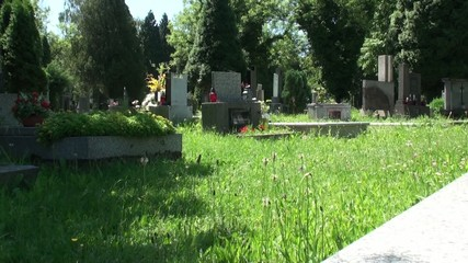 Czech Cemetery in Prague. Camera Slider.