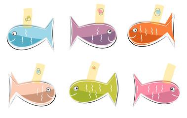 Petits poissons de couleurs