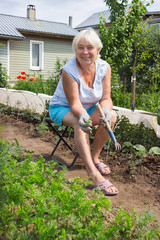 Elderly woman removes the weeds in the garden