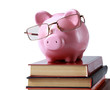 piggy bank with glasses and book isolated white background