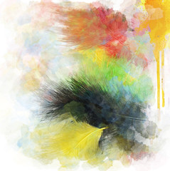 Feathers Abstract Background