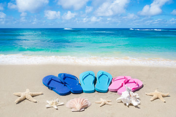 Flip flops, seashells and starfishes