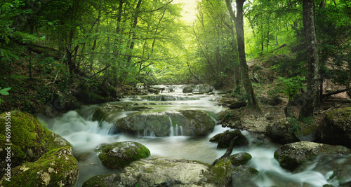 canvas print picture forest waterfall