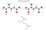 Glutamic acid (Glu) - chemical structural formula and models poster