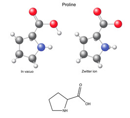 Proline (Pro) - chemical structural formula and models