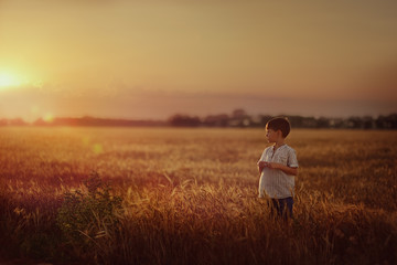 on the wheat field at sunset is a small boy