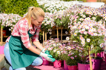 Garden center woman kneeling by potted flowers