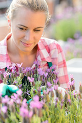 Garden center woman with purple plant flower