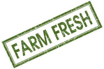 Farm fresh green square grungy stamp