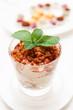 Modern style tiramisu dessert