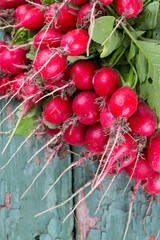 fresh radishes on wooden surface