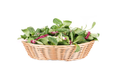Spinach and radicchio rosso mix on wicker basket.