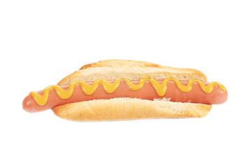 Big tasty hot dog with mustard.